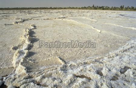 sebkha salt pan at the oasis