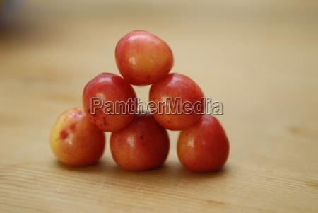 nibble progenies fruits pyramid fruit dainty
