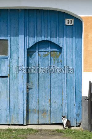 blue gate with cat place zaluzi
