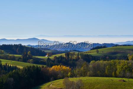panorama rheintal black forest