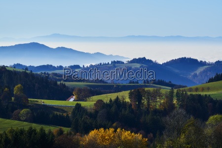 rheintal black forest vosges panorama