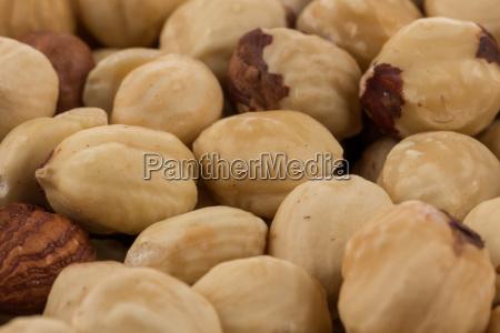 hazel nuts close up