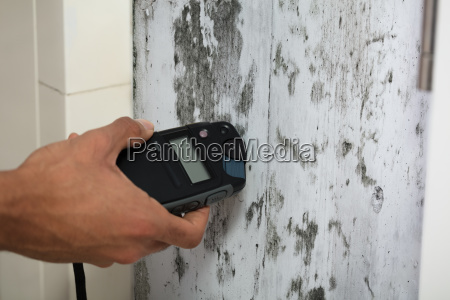 person measuring wetness of moldy wall