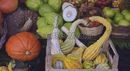 autumn vegetables at farmers market