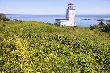 quaco head lighthouse in meadow and