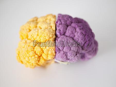 yellow and purple cauliflower studio shot