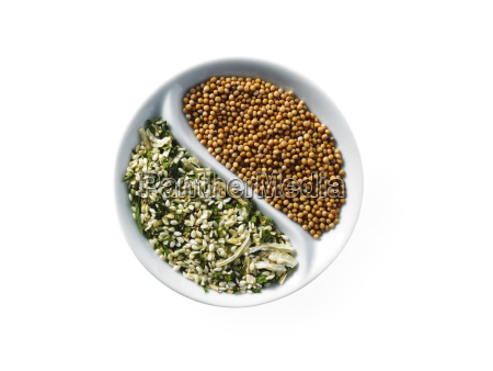 studio shot of seeds in yin