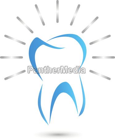 toothdental caredentistrylogo