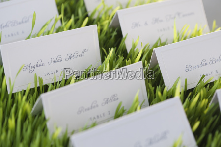 wedding table place cards in grass