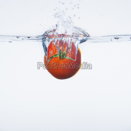 tomato splashing into water studio shot