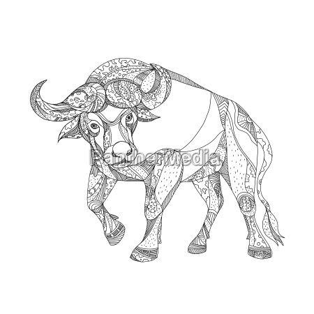 african buffalo charging doodle