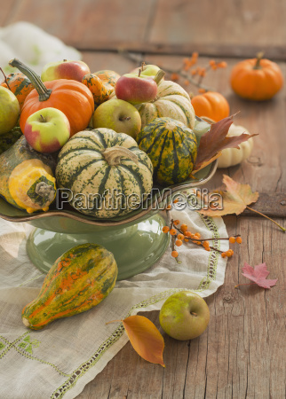 still life with gourd and pumpkins