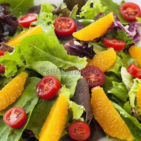 fresh salad on plate