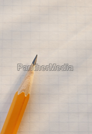 pencil on sheet of paper