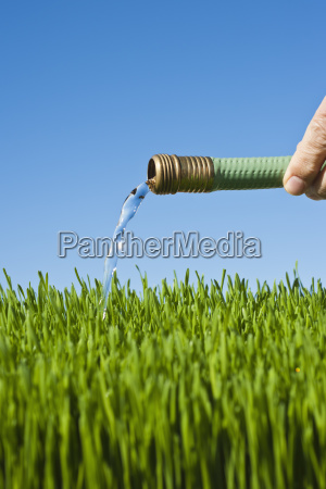 man watering grass using hose