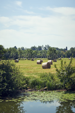 channel meadow straw bales
