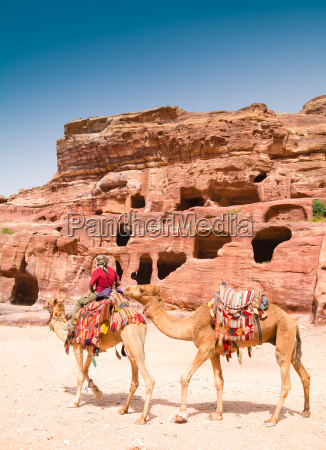 bedouin man and camels