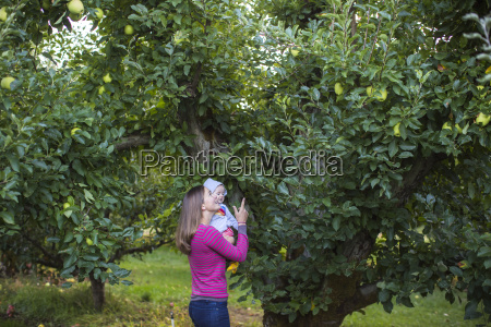 mother and baby picking apples in