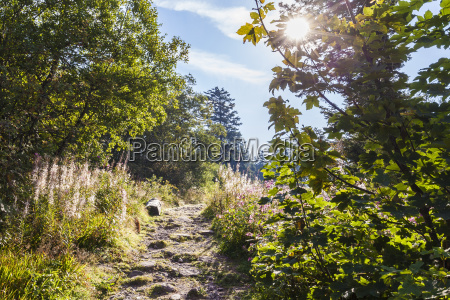 germany baden wurttemberg black forest rocky