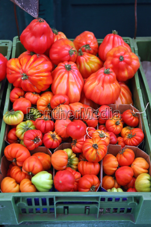 tomato in crate