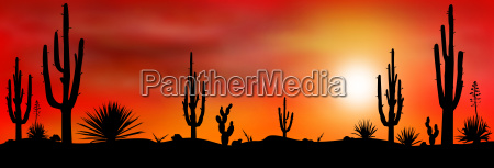 mexico desert sunset 2