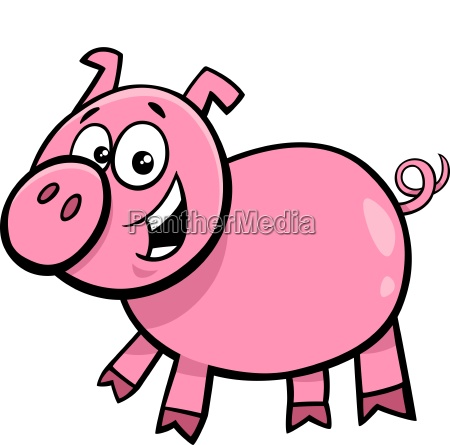 funny pig character cartoon illustration