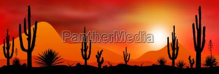 sunset sun in the desert