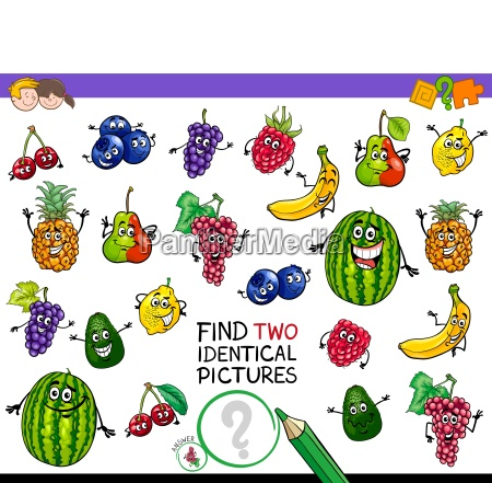 find two identical fruits game for