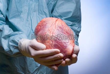 doctor physician medic medical practicioner hand