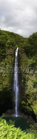 akaka falls akaka falls state park