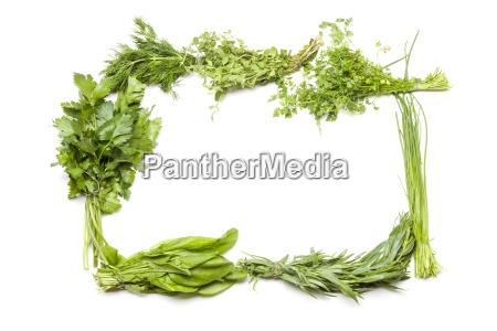 herbs for the frankfurt green sauce