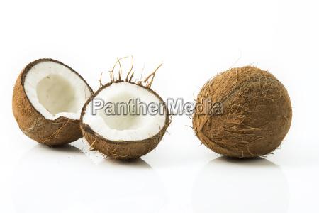 coconuts studio