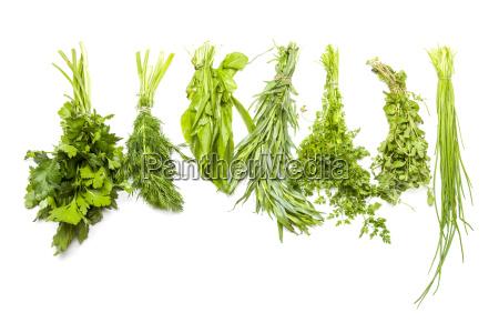 ingredients for frankfurter green sauce
