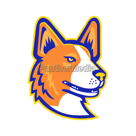 cardigan welsh corgi head mascot