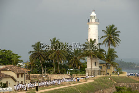 white lighthouse with palm trees bile