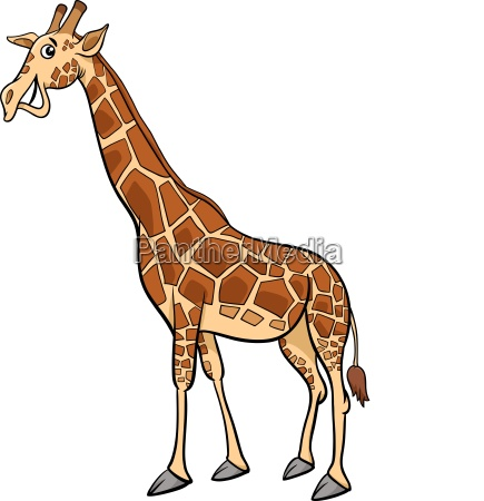 giraffe animal character cartoon illustration