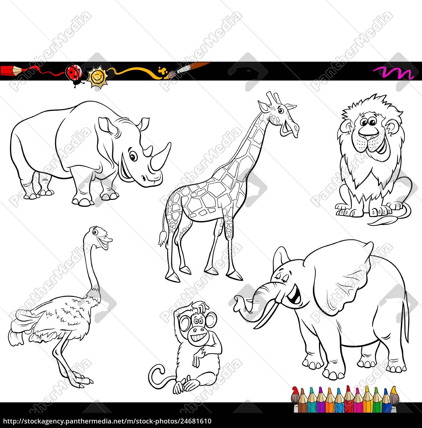 safari cartoon animal characters coloring book - Stock image ...