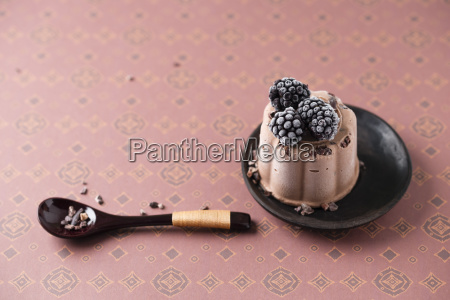 chocolate ice cream cake with blackberry