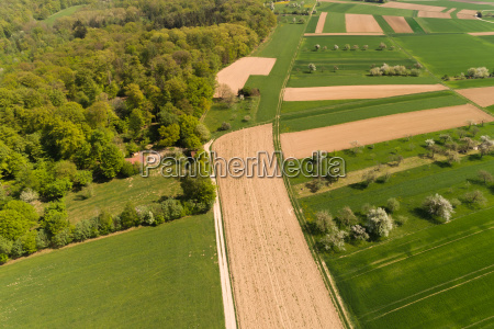 aerial view over the forest on