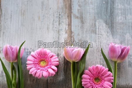 flowers on a vintage background