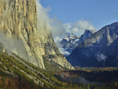 scenic view of trees and mountains