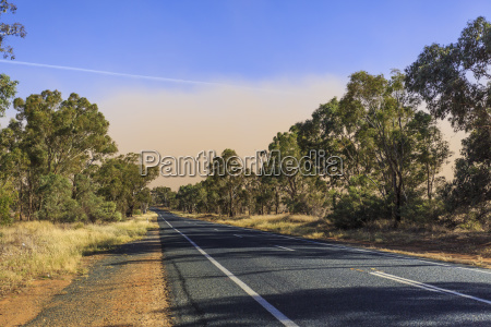 new south wales dust storm