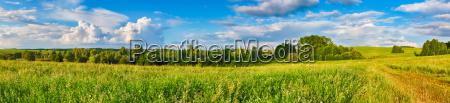 rural landscape panorama