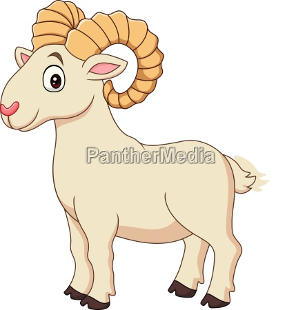 cartoon funny goat isolated on white