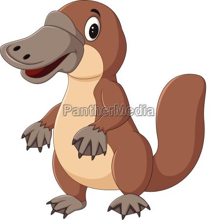 cartoon platypus isolated on white background