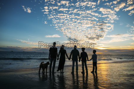 rear view of family holding hands