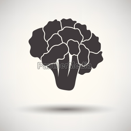 cauliflower icon on gray background