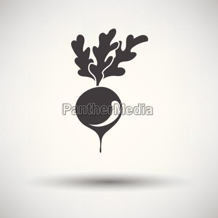 radishes icon on gray background