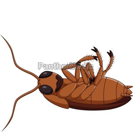 cartoon dead cockroach