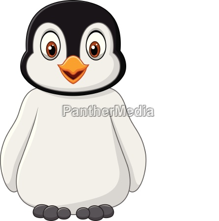 cute baby penguin posing isolated on